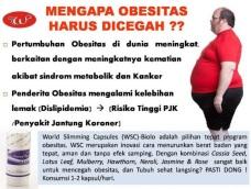 Obat tradisional obesitas