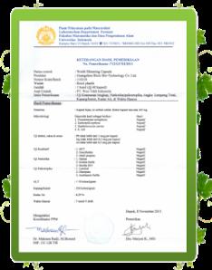 Agen resmi wsc biolo palembang